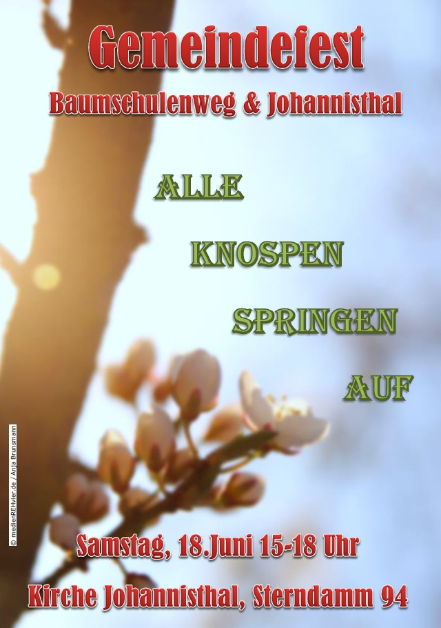 160618_Sommerfest